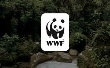 Trabajando con la  WWF