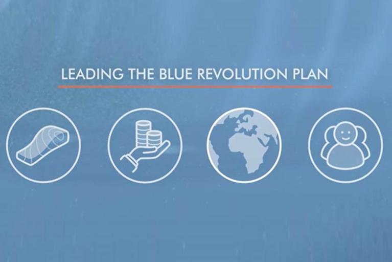 Strategia per la sostenibilità Mowi: The Blue Revolution Plan