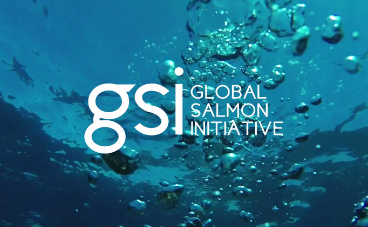 Global Salmon Initiative (GSI)