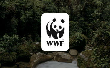 Working with the WWF